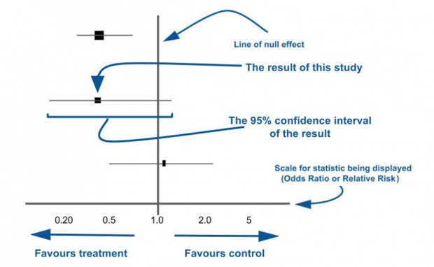 A forest plot sets out the quantitative results from different studies in a systematic review, and gives an indication of how confident we can be about their findings.