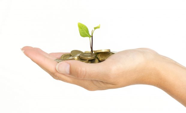 A person's hand holding some coins with a tree growing out of the middle to signify the well known saying ' money does not grow on trees'