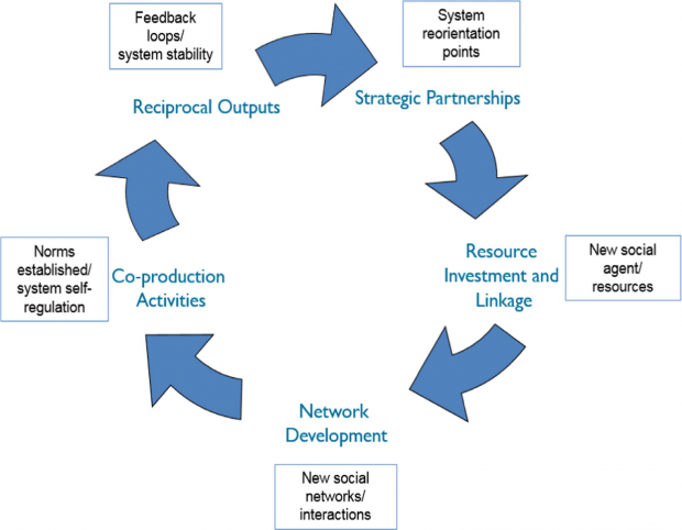 Circular flowchart depicting the T-CAS Network Cycle which comprises five key stages: 1. Strategic Partnerships (system reorientation points), 2) Resource Investment and Linkage (new social agent/resources), 3) Network development (new social networks/interactions), 4) Co-production Activities (norms established/system self regulation), 5) Reciprocal Outputs (feedback loops/system stability)